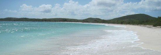 La Chiva Blue Beach Vieques Puerto Rico