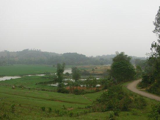 Bloom Microventures : Rice fields