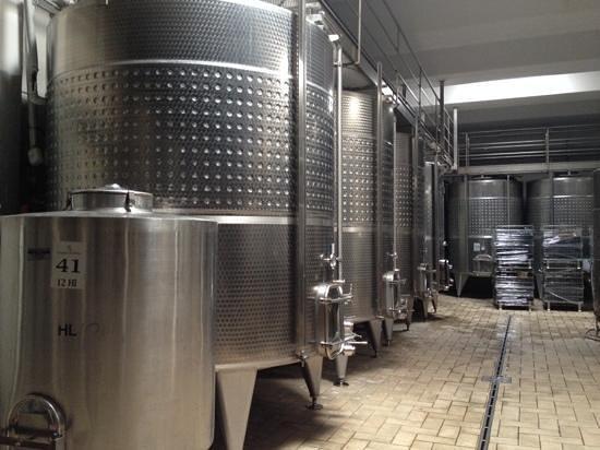 Guado al Melo: fermentazione
