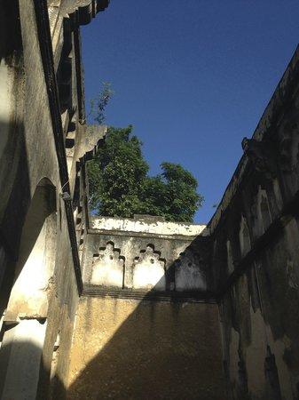 Zanzibar Yoga with Jo: Asanas under blue skies at the Mbweni Ruins