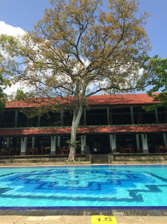 Cinnamon Lodge Habarana: Zona piscina e ristorante