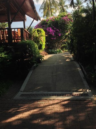 World Resort Bungalow : Walkway to the restaurant
