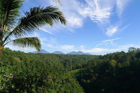 Ayung Resort Ubud: Zicht bij het ontbijt