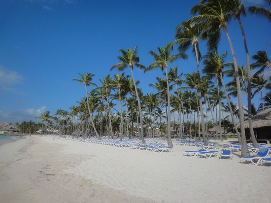 Club Med Punta Cana : plage