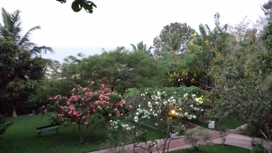 The Travancore Heritage Beach Resort: View from our room