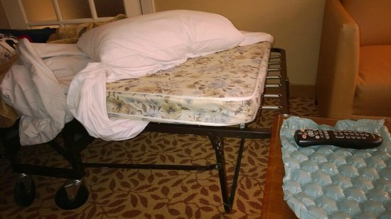 """Toronto Marriott Bloor Yorkville Hotel: a """"very comfortable"""" roll away...Really?"""