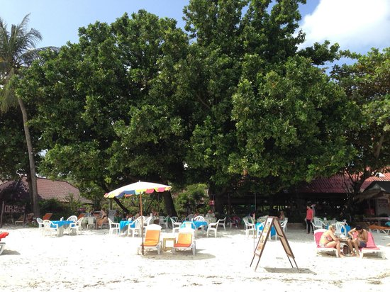 O.P. Bungalow: The great beach