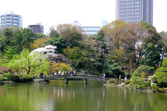 Shinjuku Gyoen National Garden: Japanese Bridge inside the park