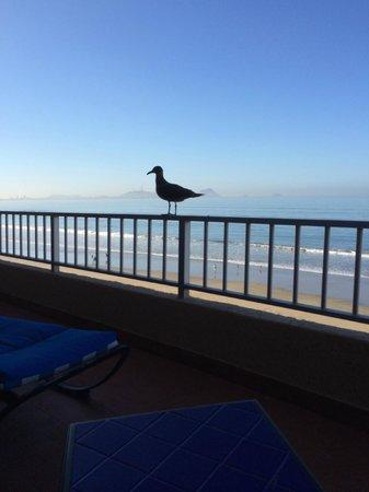 Hotel Playa Mazatlan: View from Balcony