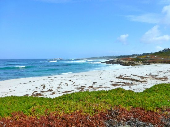 17-Mile Drive: One of the few sandy beaches