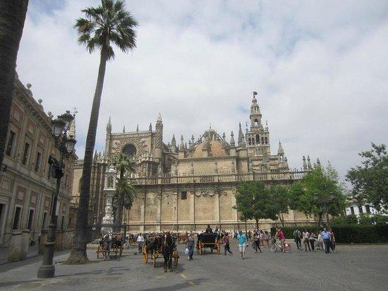 Plaza del Triunfo : cathedrale
