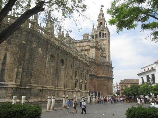Plaza del Triunfo : cathedrale et giralda