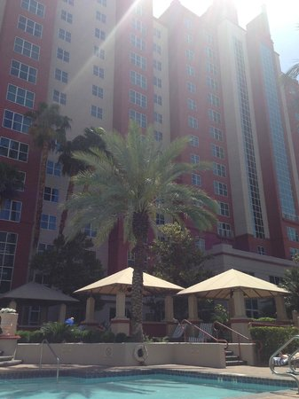 Hilton Grand Vacations at the Flamingo: Beautiful sun by heated pool.
