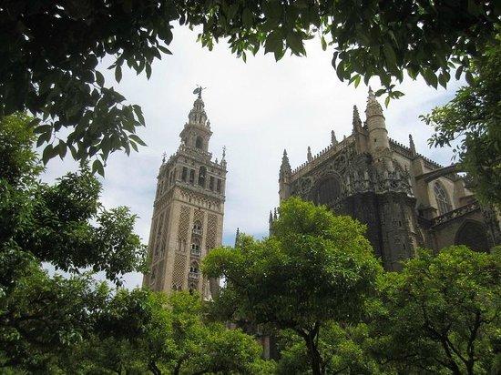 Torre Giralda : du jardin des orangers