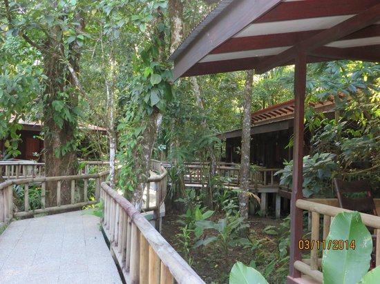 Evergreen Lodge: walkway to rooms