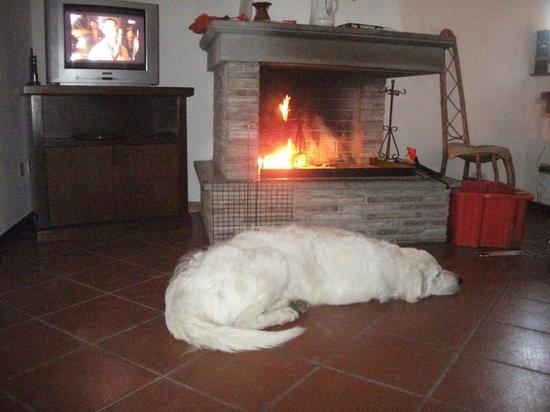 Agriturismo Sant'Erasmo: relax