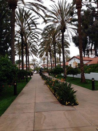 Omni La Costa Resort & Spa: Grounds