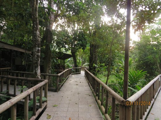 Evergreen Lodge: Stilted walk ways