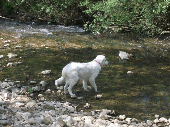 Agriturismo Sant'Erasmo: al fiume