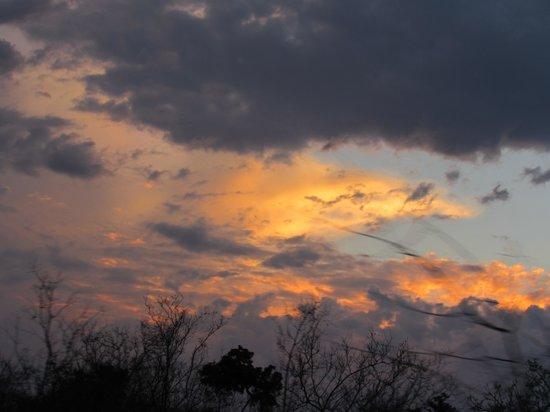 Motswari Private Game Reserve: A Sunset Photo Taken On Safari