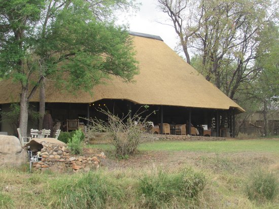 Motswari Private Game Reserve: The Thatched Roof Structure Where Our Dinners Were Served