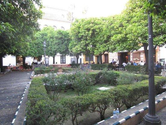 Barrio Santa Cruz : place elvira