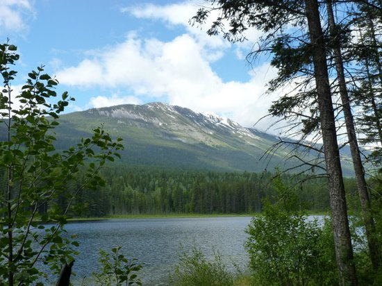 Moonrakers, Golden, Bc: Hiking allows you to enjoy the scenery that little bit more.