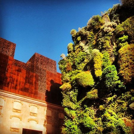 CaixaForum: The greenwall beautifully compliments the building.