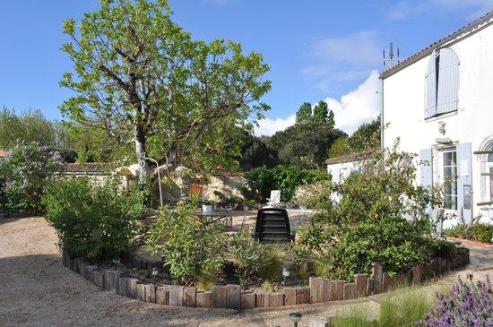 Au Calme des Figuiers : La cour et le jardin