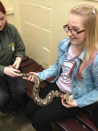 Pili Palas Nature World : Holding a Python