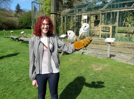 Swinton Park : Hollie with owls