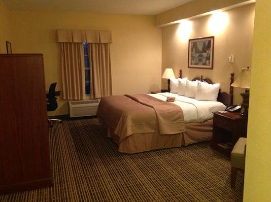 Quality Inn of Lake City: king room