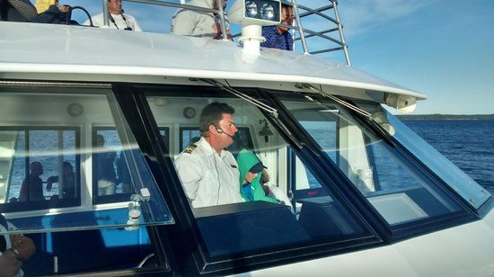 Jervis Bay Wild Cruises: The Wonderful Captain