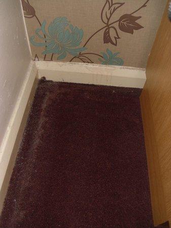 Dust On The Room Floor