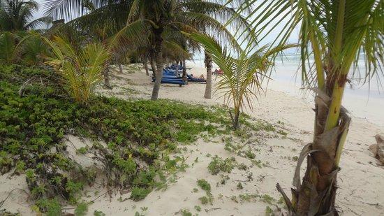Los Lirios Hotel Cabanas: Nos maravillo la playa de Tulum, la del hotel especialmente es muy bonita