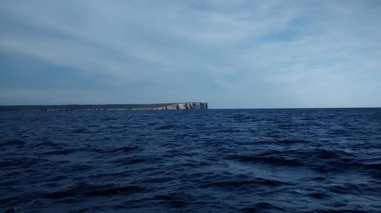Jervis Bay Wild Cruises: The View