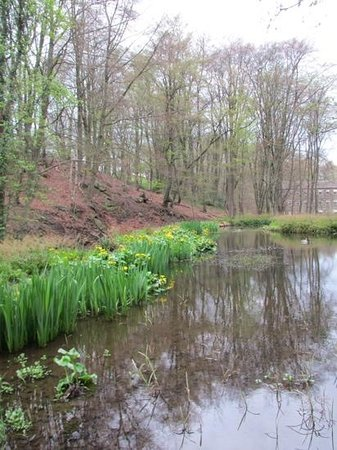 Hewenden Mill Holiday Cottages: Stream leading to Bents Mill.