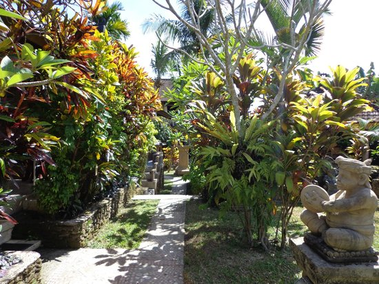 Guci Guesthouses: garden path