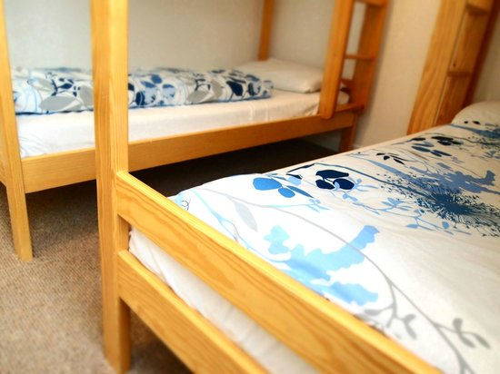 Typical Bunk Beds At Ocean Lodge Adult Sized Bunk Beds Picture