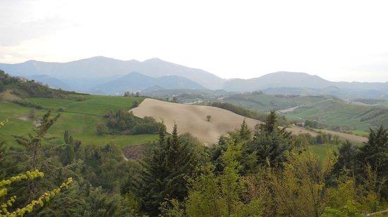 Agriturismo Ca' Maddalena : Panorama collinare del Montefeltro