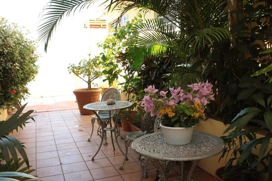 LemonTree Oceanfront Cottages: Gorgeous plants on the Cottage grounds