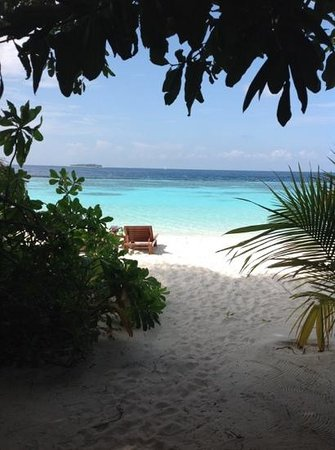 Baros Maldives: view from my beach villa