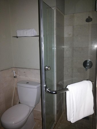 Hotel Santika Taman Mini Indonesia Indah-: the bathroom