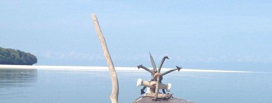 Menai Bay Beach Bungalows: Närmsta ön i sikte