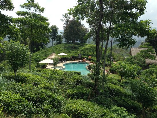 98 Acres Resort and Spa : Swimming Pool