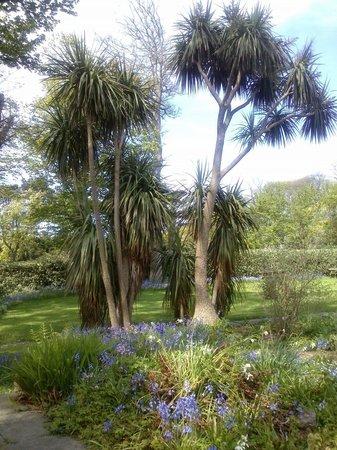 Grove Museum of Victorian Life: The garden.