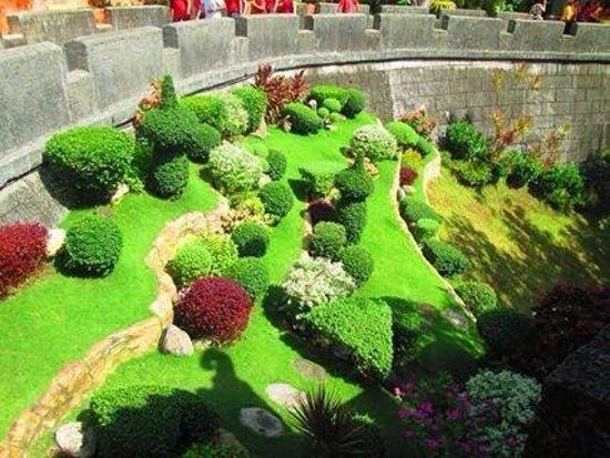 Taoist Temple : greens