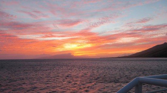 Pacific Whale Foundation : Beautiful Maui Sunset