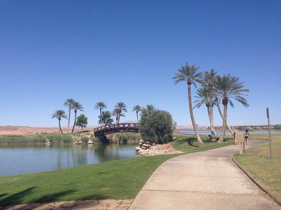 The Westin Lake Las Vegas Resort & Spa: By the gardens
