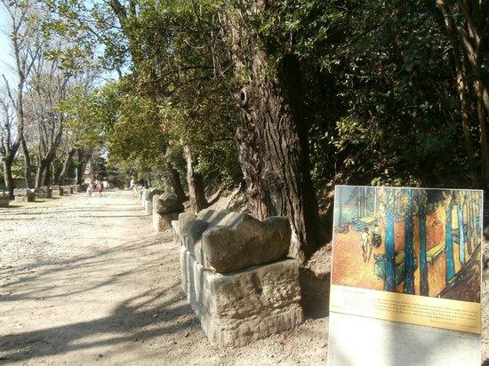 Les Alyscamps : viale dei sarcofagi con dipinto di Van Gogh